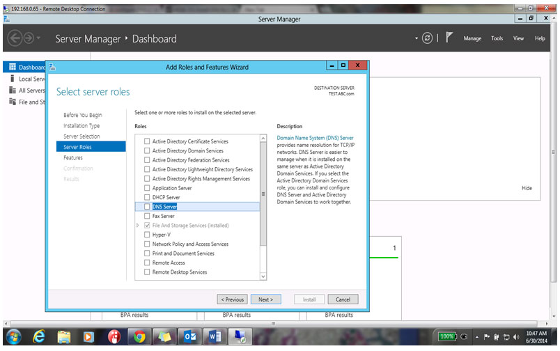 Roles window, select the DNS Server